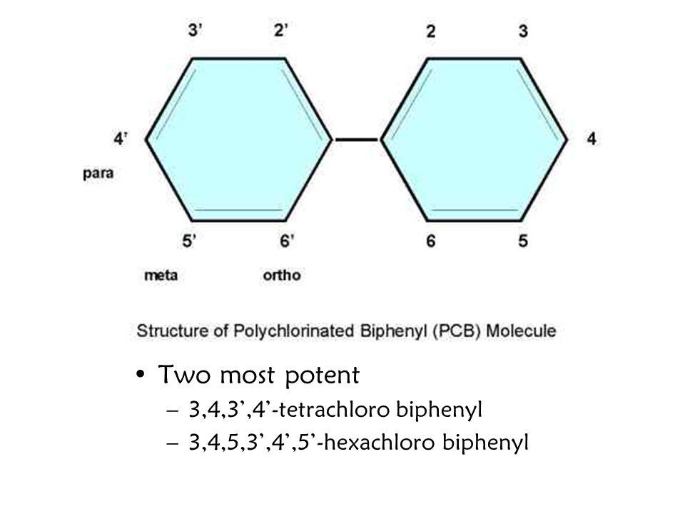 Two most potent –3,4,3',4'-tetrachloro biphenyl –3,4,5,3',4',5'-hexachloro biphenyl