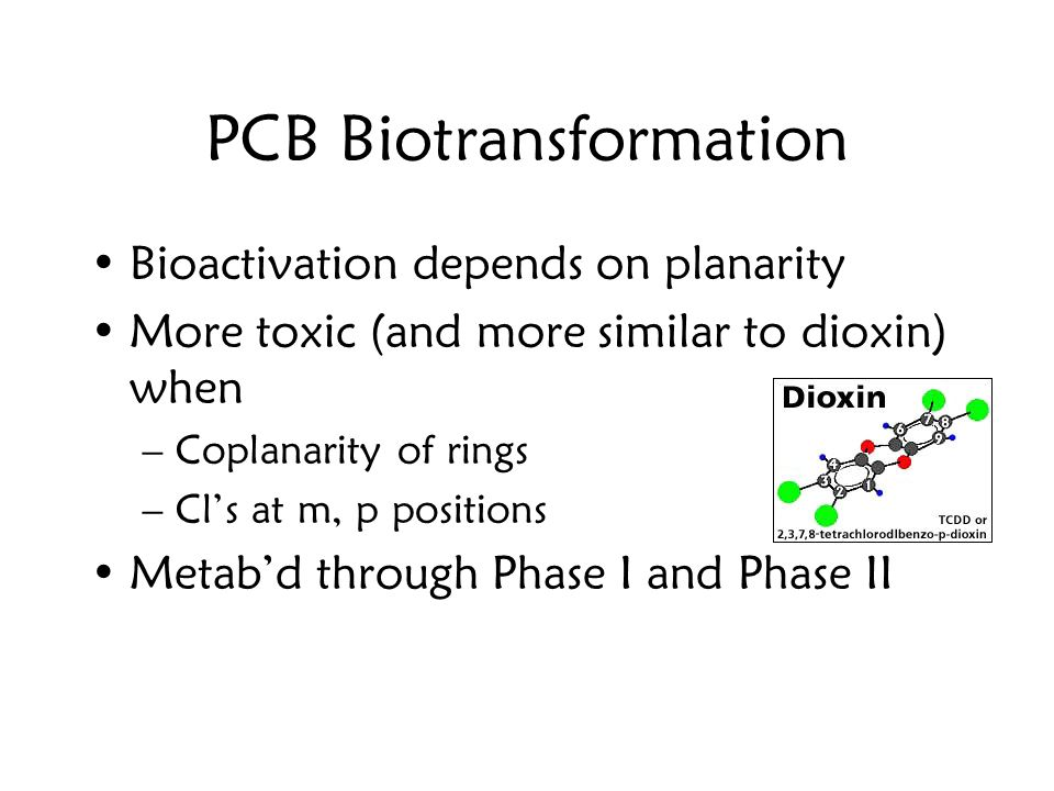 PCB Biotransformation Bioactivation depends on planarity More toxic (and more similar to dioxin) when –Coplanarity of rings –Cl's at m, p positions Metab'd through Phase I and Phase II