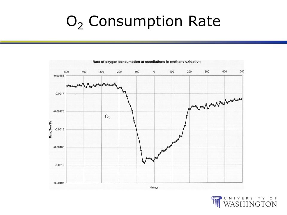 O 2 Consumption Rate