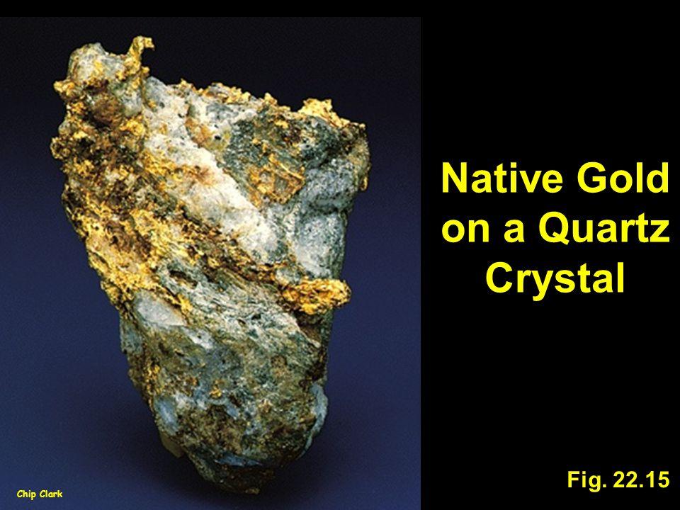 Native Gold on a Quartz Crystal Fig. 22.15 Chip Clark