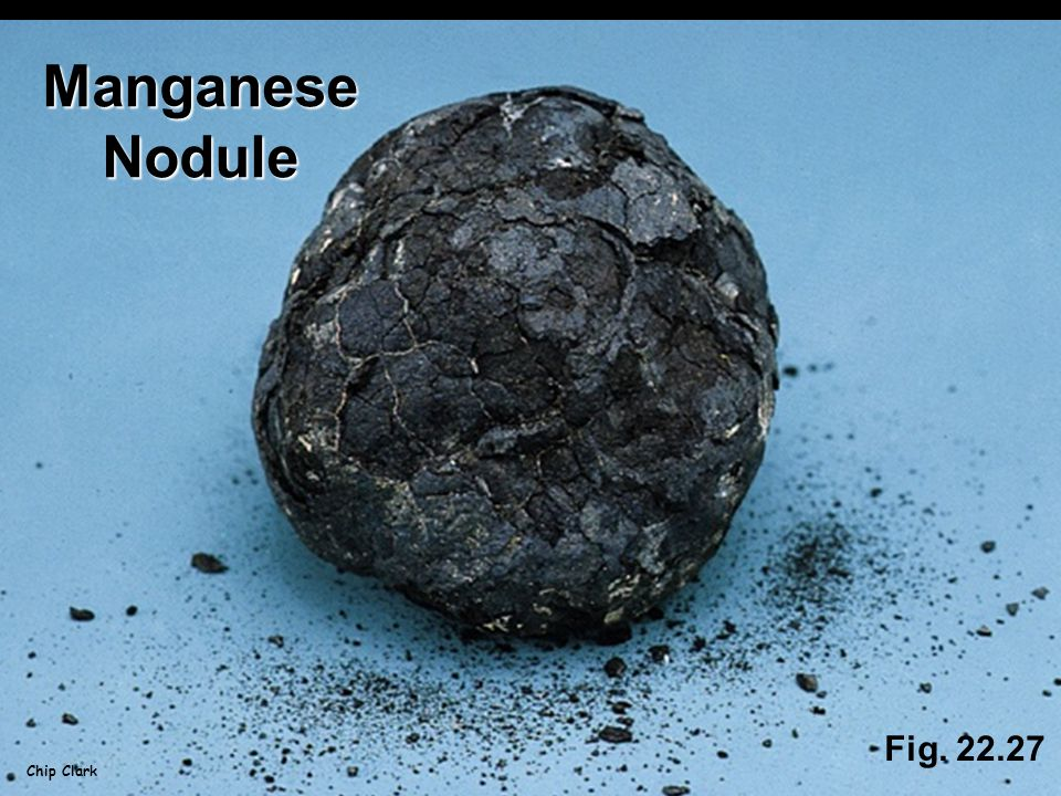 Fig. 22.27 Chip Clark ManganeseNodule