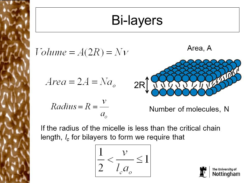 Bi-layers If the radius of the micelle is less than the critical chain length, l c for bilayers to form we require that 2R Number of molecules, N Area