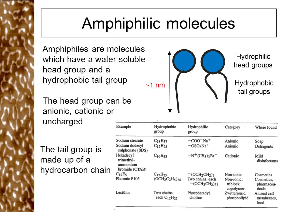 Amphiphilic molecules Amphiphiles are molecules which have a water soluble head group and a hydrophobic tail group The head group can be anionic, cati