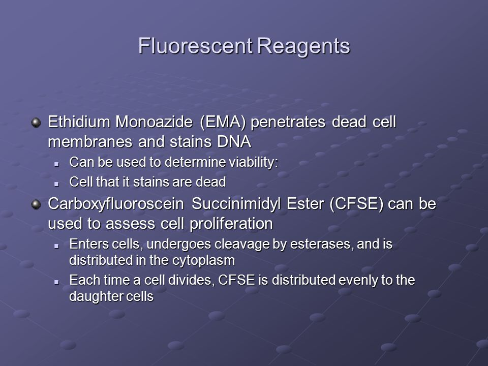 Fluorescent Reagents Ethidium Monoazide (EMA) penetrates dead cell membranes and stains DNA Can be used to determine viability: Can be used to determine viability: Cell that it stains are dead Cell that it stains are dead Carboxyfluoroscein Succinimidyl Ester (CFSE) can be used to assess cell proliferation Enters cells, undergoes cleavage by esterases, and is distributed in the cytoplasm Enters cells, undergoes cleavage by esterases, and is distributed in the cytoplasm Each time a cell divides, CFSE is distributed evenly to the daughter cells Each time a cell divides, CFSE is distributed evenly to the daughter cells