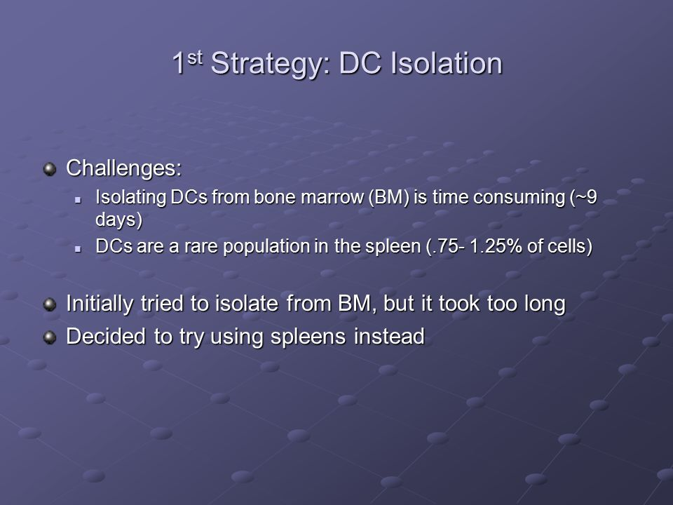 1 st Strategy: DC Isolation Challenges: Isolating DCs from bone marrow (BM) is time consuming (~9 days) Isolating DCs from bone marrow (BM) is time consuming (~9 days) DCs are a rare population in the spleen (.75- 1.25% of cells) DCs are a rare population in the spleen (.75- 1.25% of cells) Initially tried to isolate from BM, but it took too long Decided to try using spleens instead