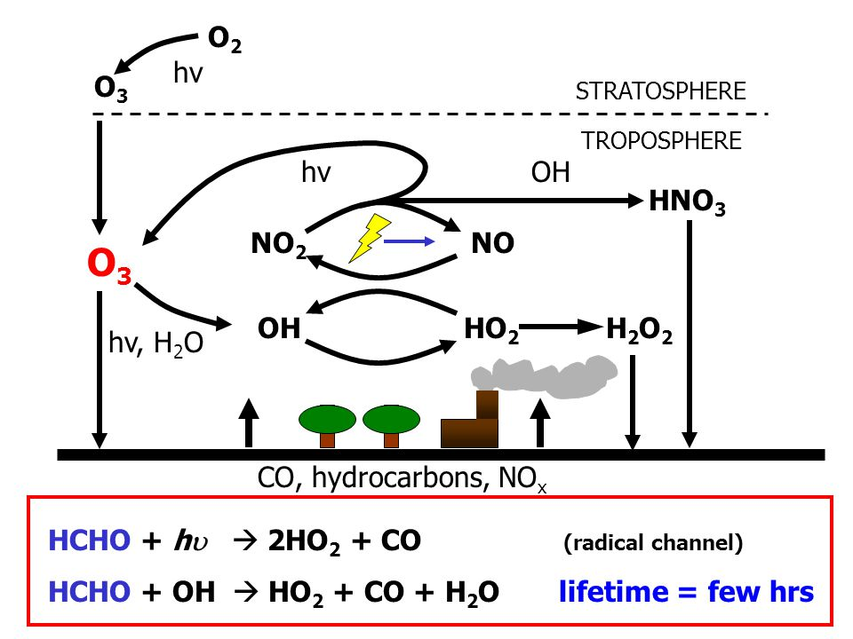 CO, hydrocarbons, NO x STRATOSPHERE TROPOSPHERE HO 2 OH NONO 2 H2O2H2O2 O3O3 O3O3 O2O2 hv, H 2 O hv HNO 3 OH HCHO + h   2HO 2 + CO (radical channel) HCHO + OH  HO 2 + CO + H 2 O lifetime = few hrs