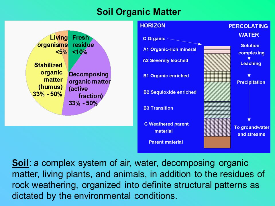 Soil Organic Matter Soil: a complex system of air, water, decomposing organic matter, living plants, and animals, in addition to the residues of rock