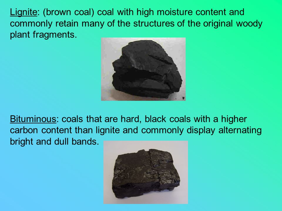 Lignite: (brown coal) coal with high moisture content and commonly retain many of the structures of the original woody plant fragments. Bituminous: co