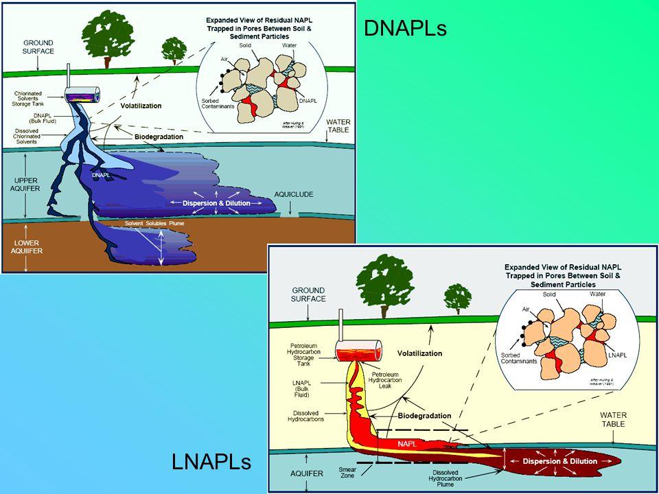 DNAPLs LNAPLs