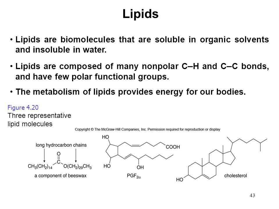 43 Lipids are biomolecules that are soluble in organic solvents and insoluble in water. Lipids are composed of many nonpolar C – H and C – C bonds, an