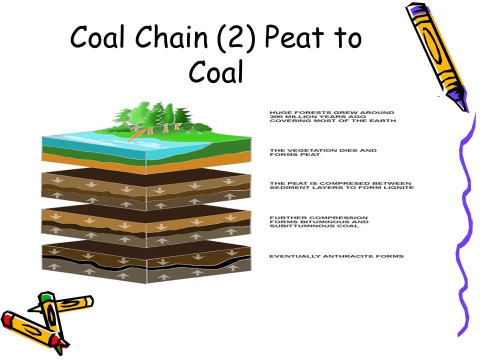 Coal Chain (2) Peat to Coal