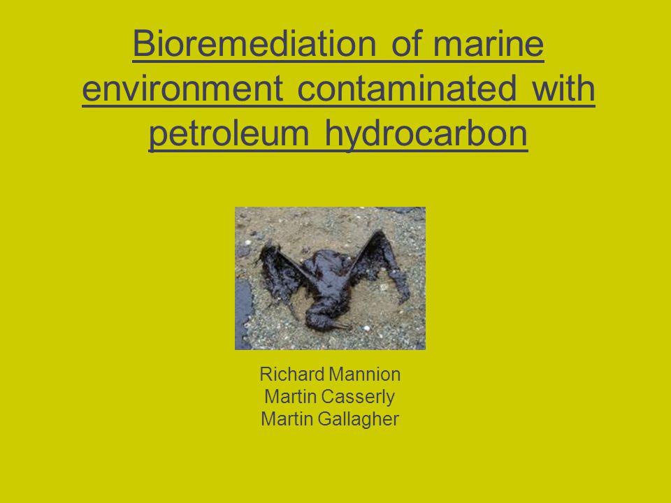 Bioremediation of marine environment contaminated with petroleum hydrocarbon Richard Mannion Martin Casserly Martin Gallagher