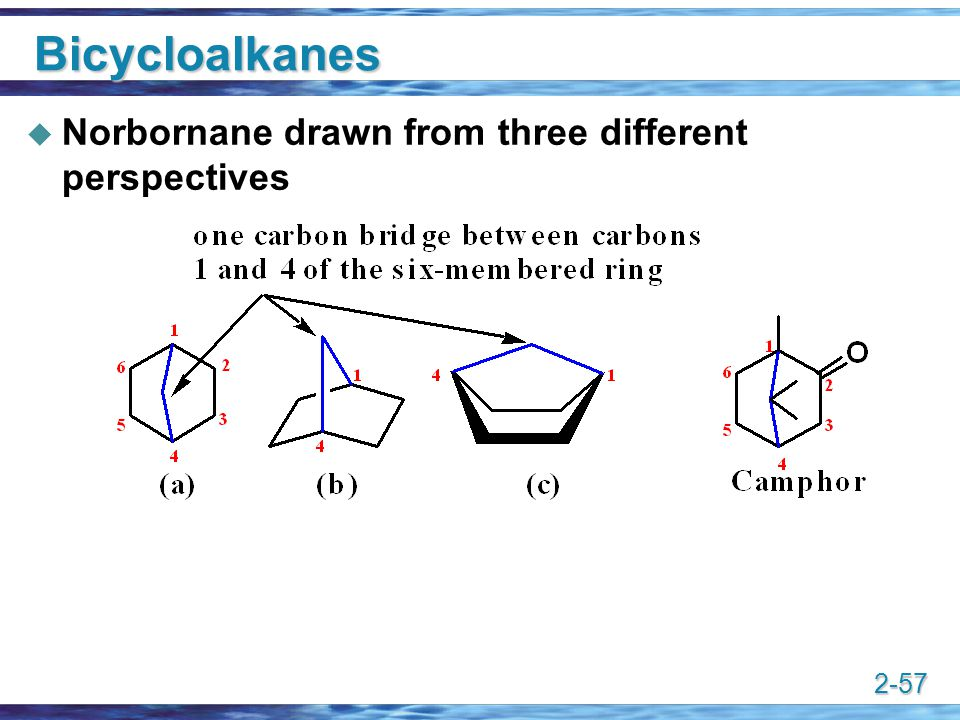 2-57 Bicycloalkanes  Norbornane drawn from three different perspectives