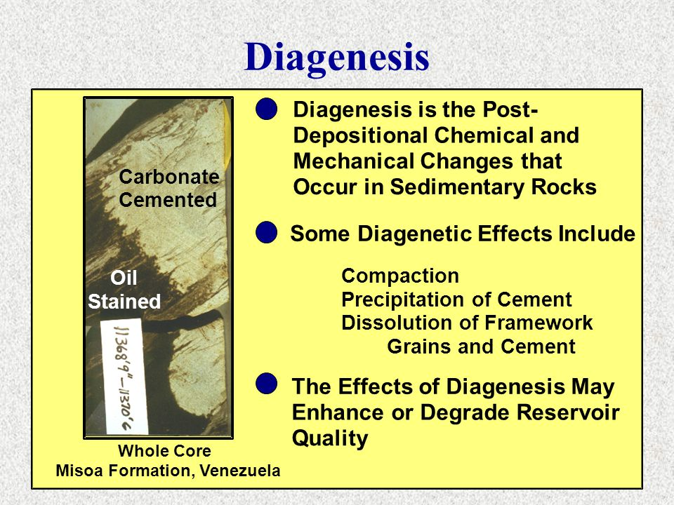 Diagenesis Carbonate Cemented Oil Stained Diagenesis is the Post- Depositional Chemical and Mechanical Changes that Occur in Sedimentary Rocks Some Di