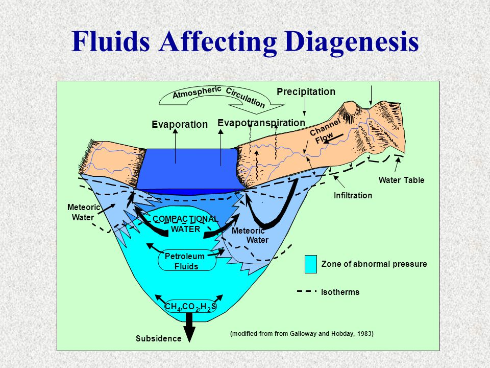 Fluids Affecting Diagenesis