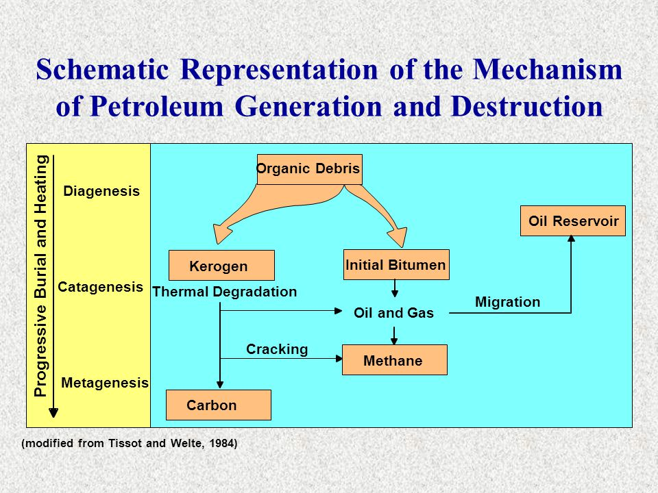 Schematic Representation of the Mechanism of Petroleum Generation and Destruction (modified from Tissot and Welte, 1984) Organic Debris Kerogen Carbon
