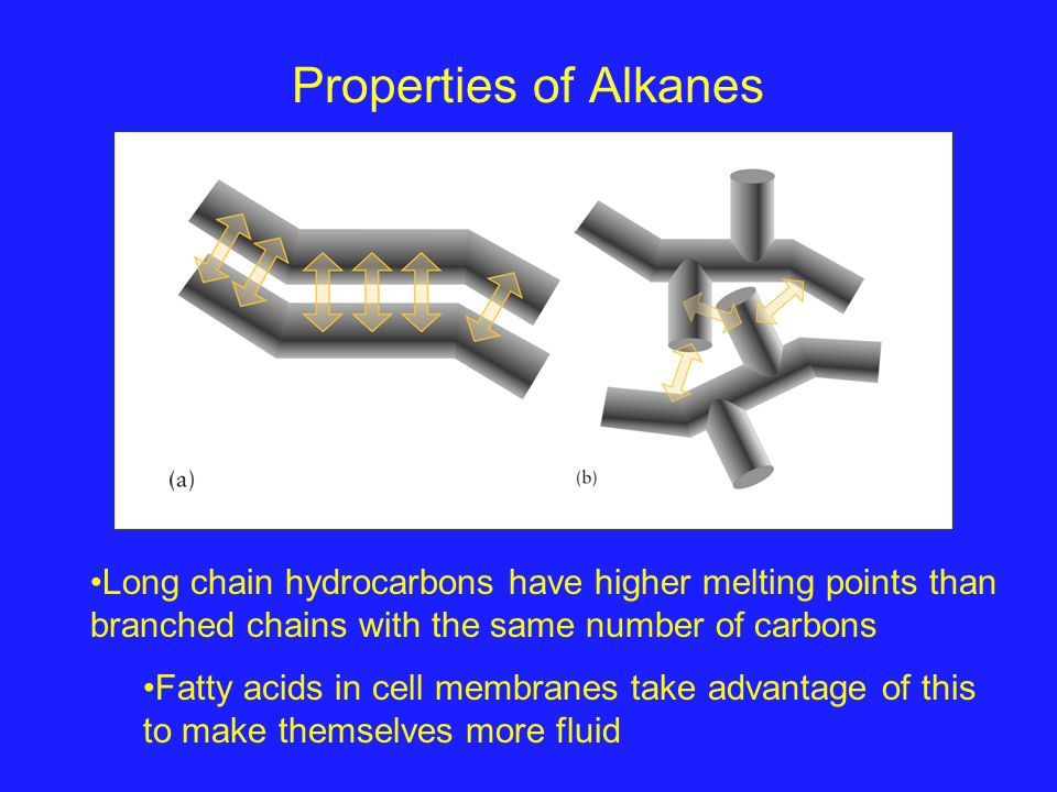 Properties of Alkanes Long chain hydrocarbons have higher melting points than branched chains with the same number of carbons Fatty acids in cell memb