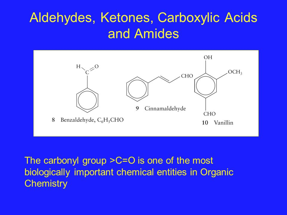 Aldehydes, Ketones, Carboxylic Acids and Amides The carbonyl group >C=O is one of the most biologically important chemical entities in Organic Chemist