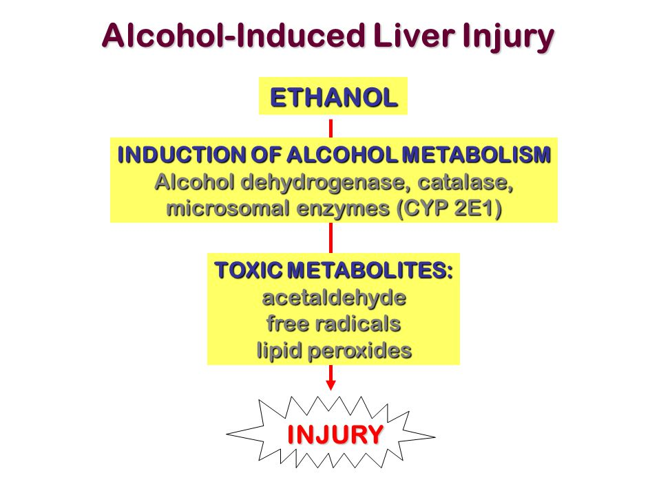 Alcohol-Induced Liver Injury ETHANOL TOXIC METABOLITES: acetaldehyde free radicals lipid peroxides INDUCTION OF ALCOHOL METABOLISM Alcohol dehydrogena