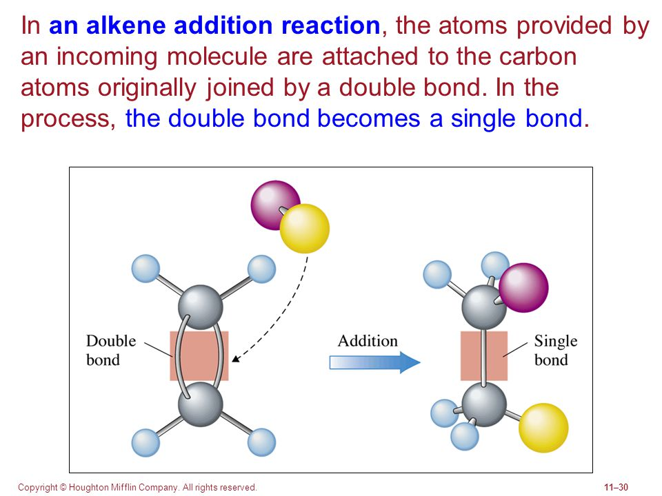 Copyright © Houghton Mifflin Company. All rights reserved.11–30 In an alkene addition reaction, the atoms provided by an incoming molecule are attache
