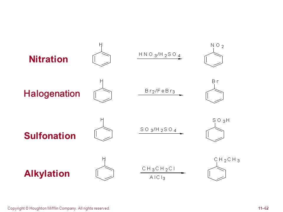 Copyright © Houghton Mifflin Company. All rights reserved.11–62 Nitration Halogenation Sulfonation Alkylation