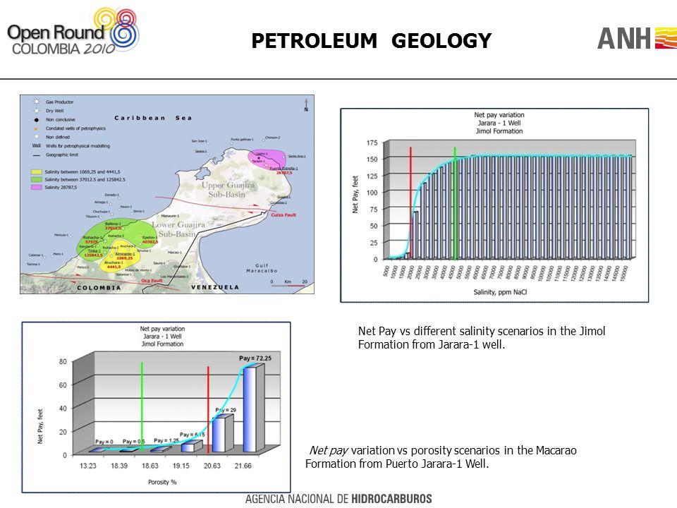 PETROLEUM GEOLOGY Net pay variation vs porosity scenarios in the Macarao Formation from Puerto Jarara-1 Well. Net Pay vs different salinity scenarios