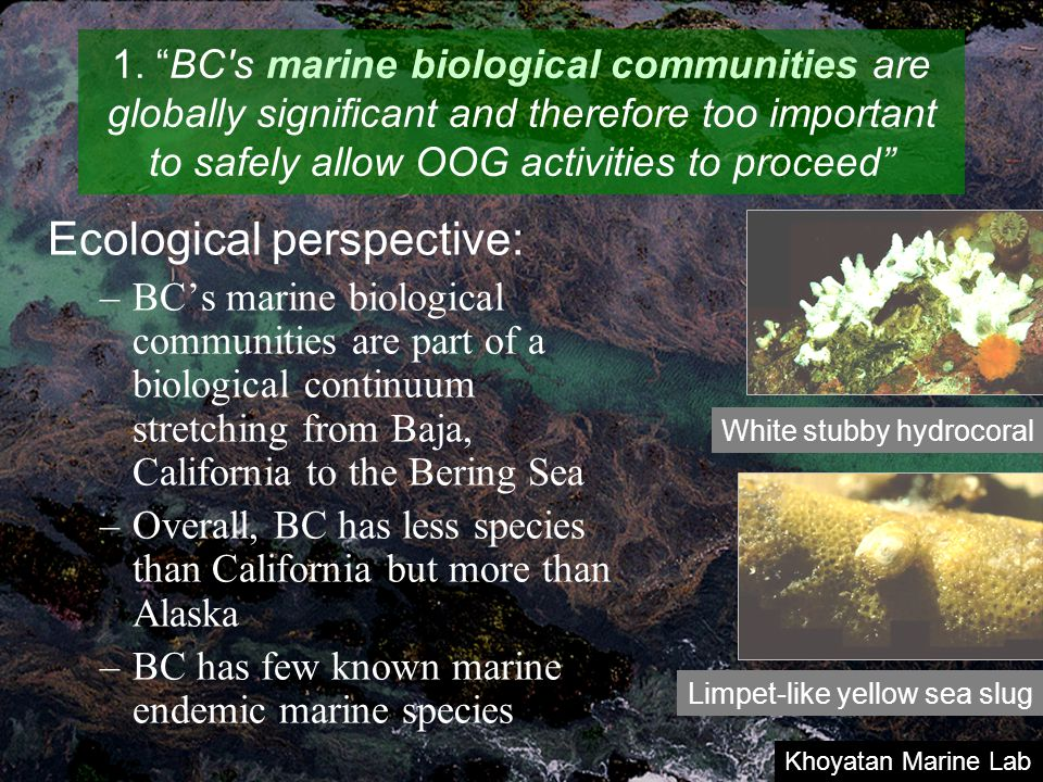 "1. ""BC's marine biological communities are globally significant and therefore too important to safely allow OOG activities to proceed"" Ecological pers"