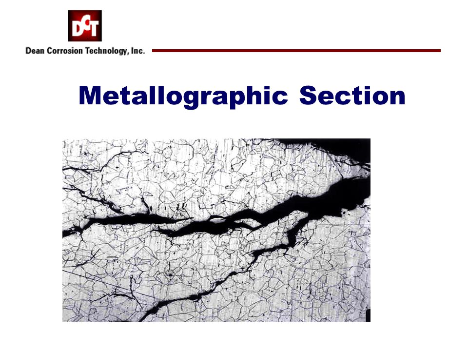 Metallographic Section