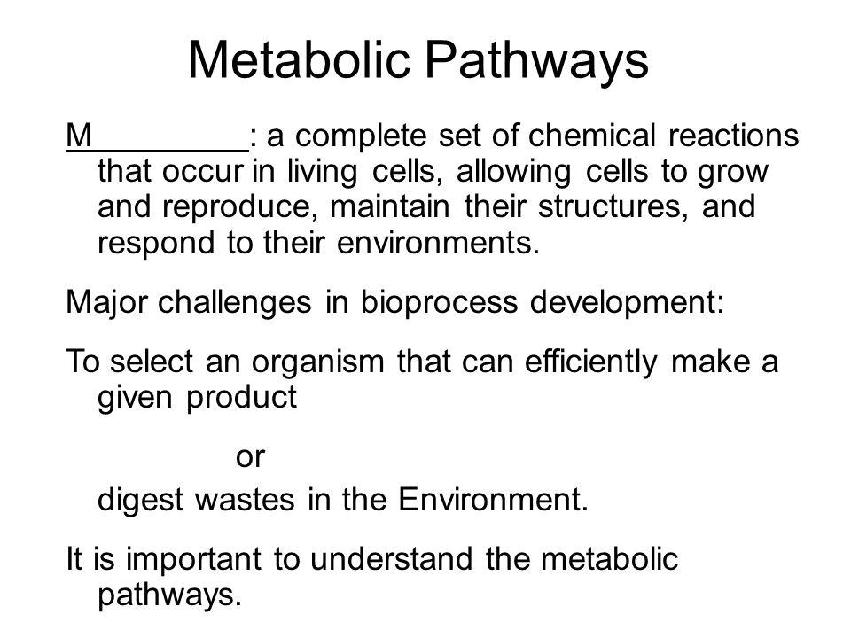 Glucose Catabolism Glycolysis http://www.science.smith.edu/department s/Biology/Bio231/glycolysis.htmlhttp://www.science.smith.edu/department s/Biology/Bio231/glycolysis.html