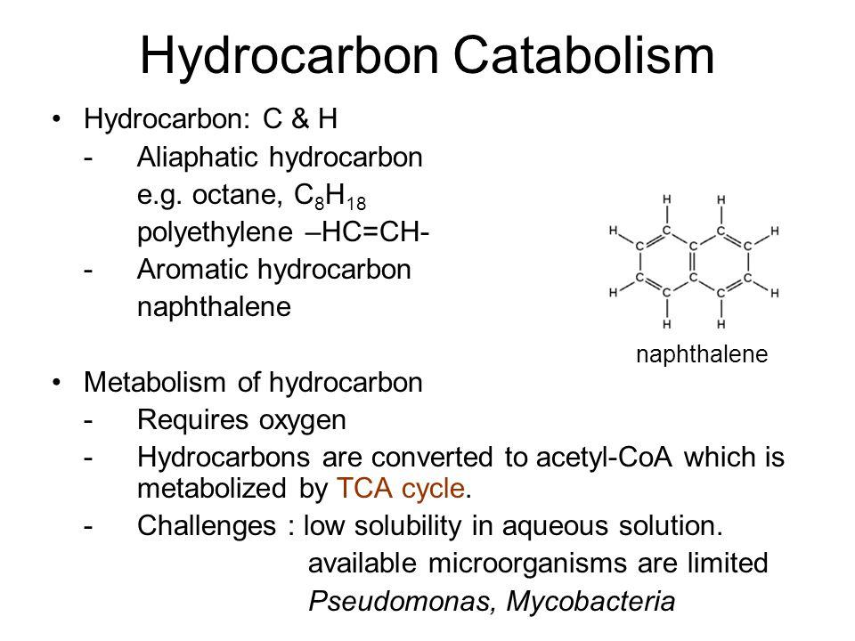 Hydrocarbon Catabolism Hydrocarbon: C & H -Aliaphatic hydrocarbon e.g. octane, C 8 H 18 polyethylene –HC=CH- - Aromatic hydrocarbon naphthalene Metabo