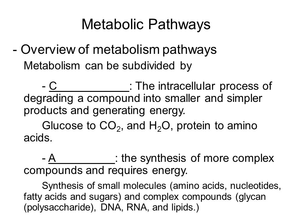 Metabolic Pathways - Overview of metabolism pathways Metabolism can be subdivided by - C : The intracellular process of degrading a compound into smal