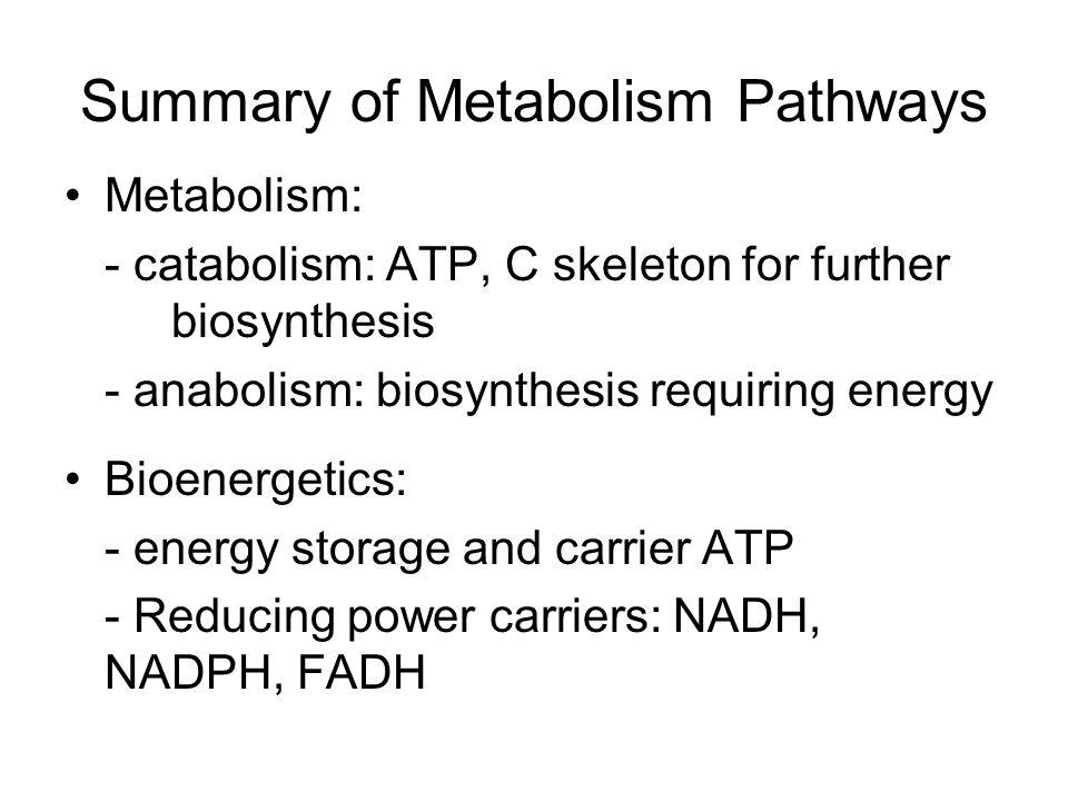 Summary of Metabolism Pathways Metabolism: - catabolism: ATP, C skeleton for further biosynthesis - anabolism: biosynthesis requiring energy Bioenerge
