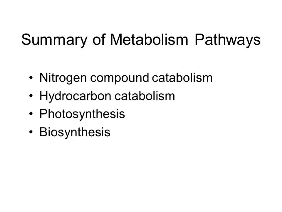 Summary of Metabolism Pathways Nitrogen compound catabolism Hydrocarbon catabolism Photosynthesis Biosynthesis