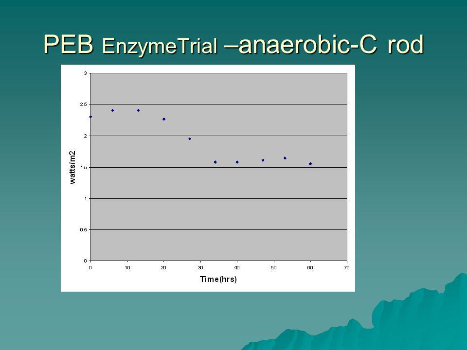 PEB EnzymeTrial –anaerobic-C rod
