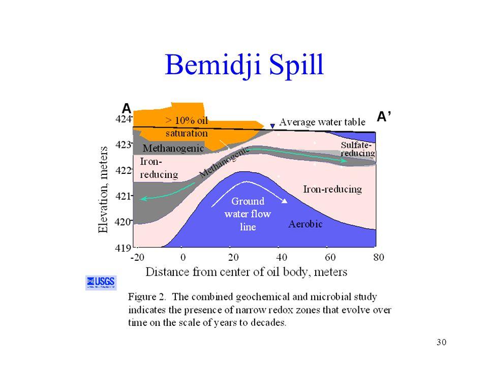 30 Bemidji Spill