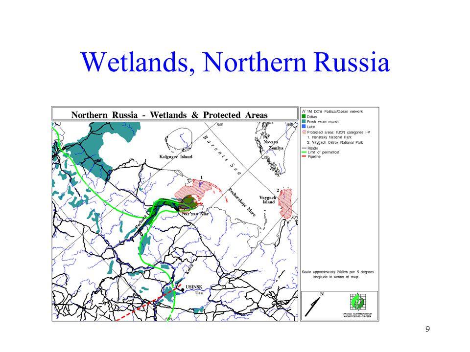 9 Wetlands, Northern Russia