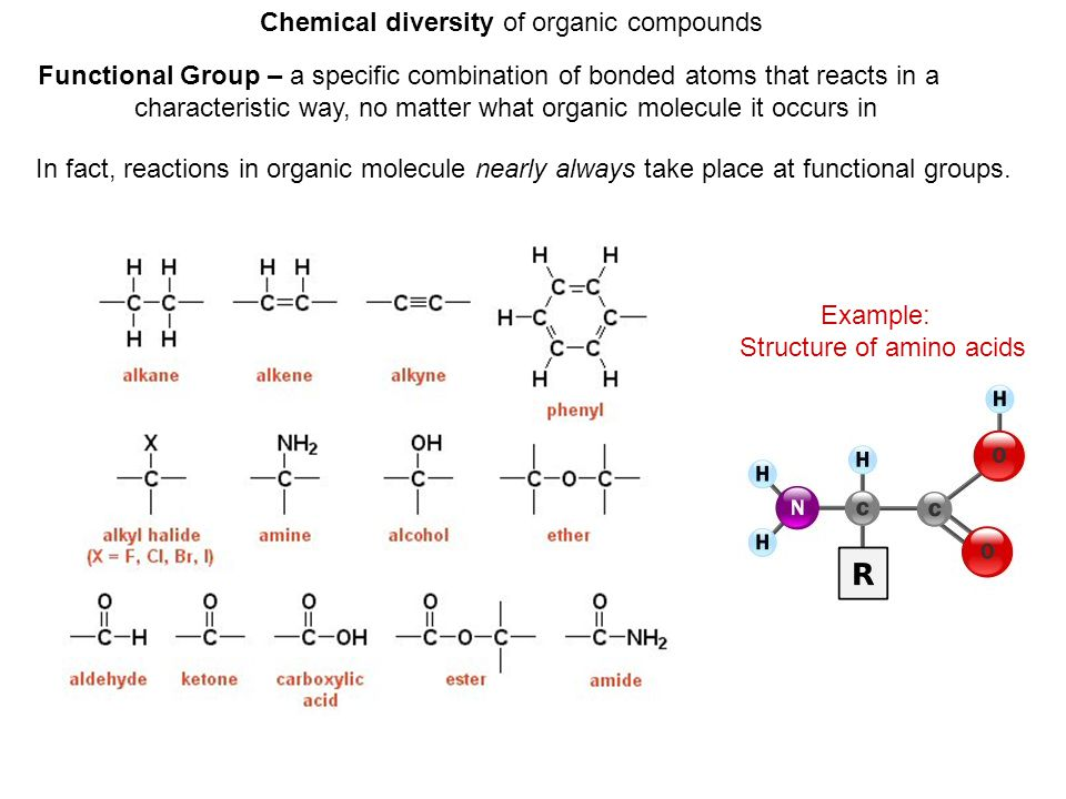 Chemical diversity of organic compounds Functional Group – a specific combination of bonded atoms that reacts in a characteristic way, no matter what organic molecule it occurs in In fact, reactions in organic molecule nearly always take place at functional groups.