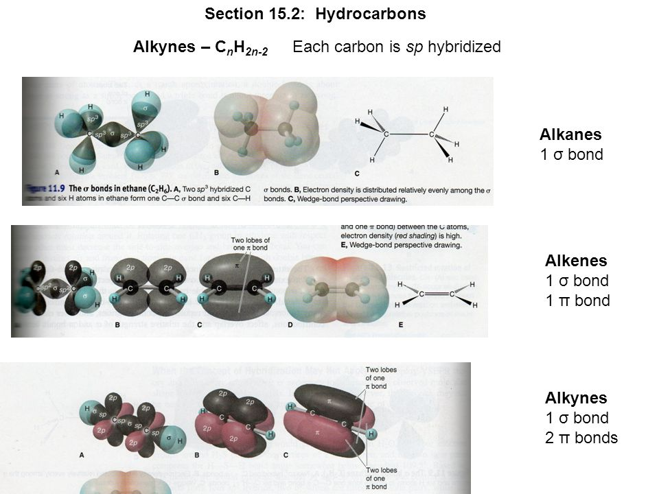 Section 15.2: Hydrocarbons Alkynes – C n H 2n-2 Each carbon is sp hybridized Alkanes 1 σ bond Alkenes 1 σ bond 1 π bond Alkynes 1 σ bond 2 π bonds