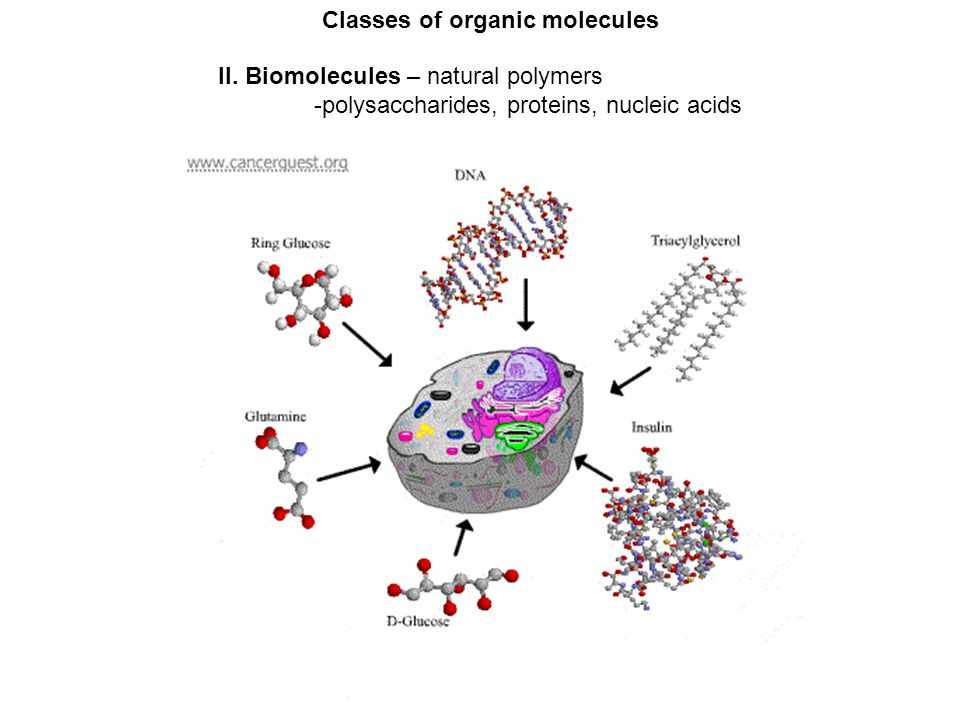 Classes of organic molecules II.