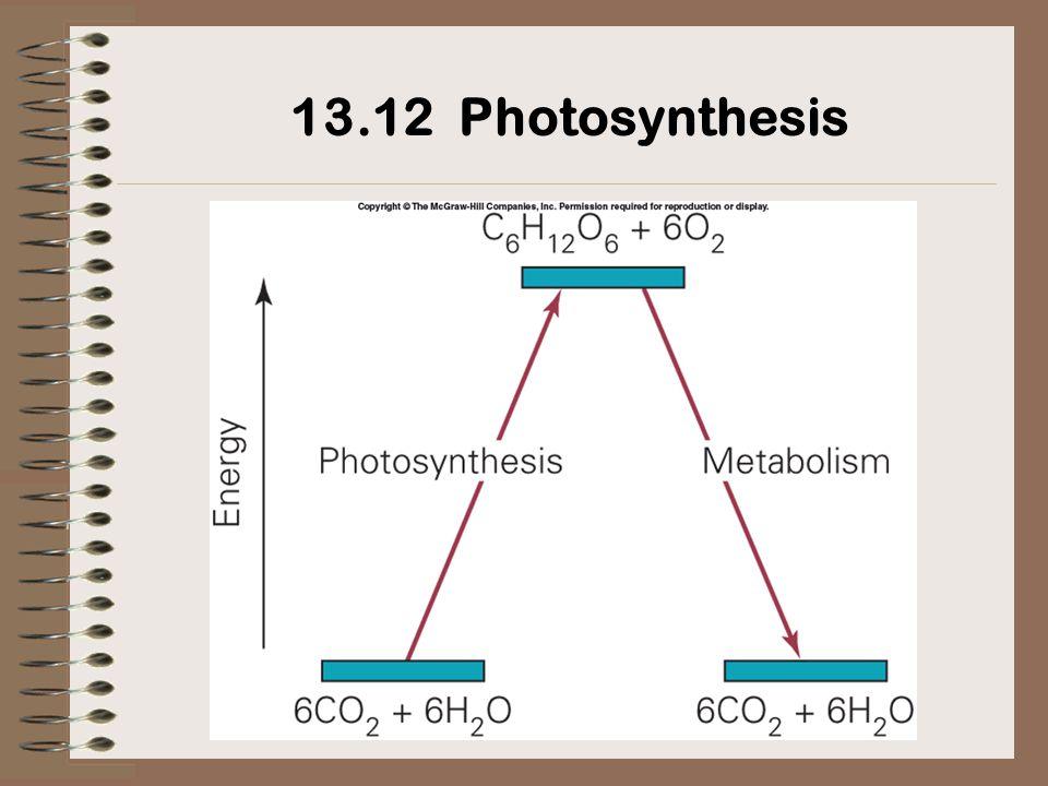 13.12 Photosynthesis