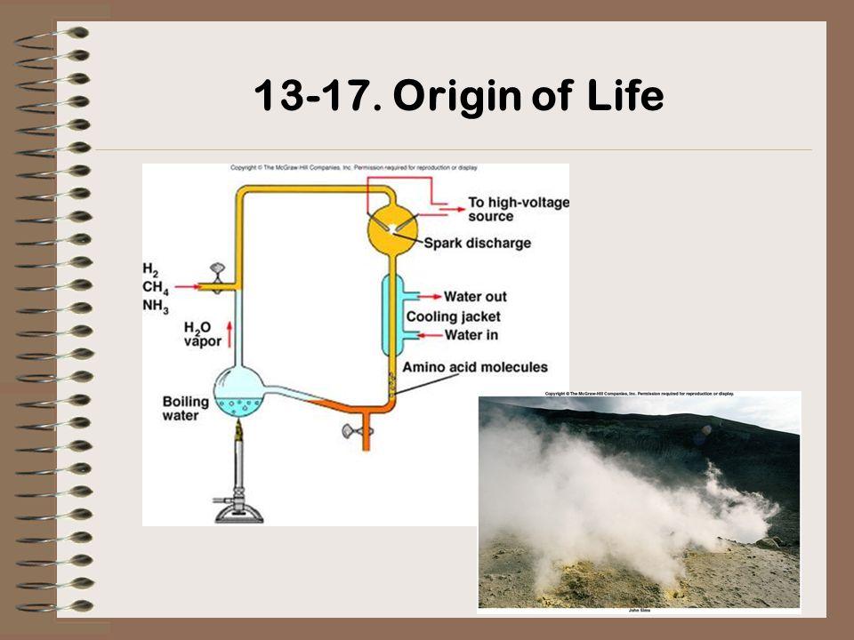 13-17. Origin of Life