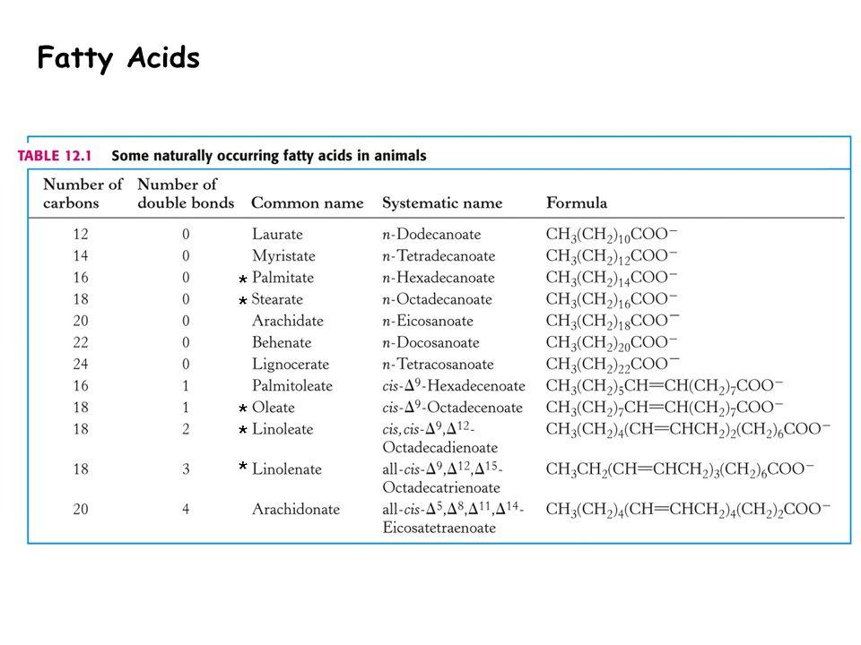 * * * * * Fatty Acids