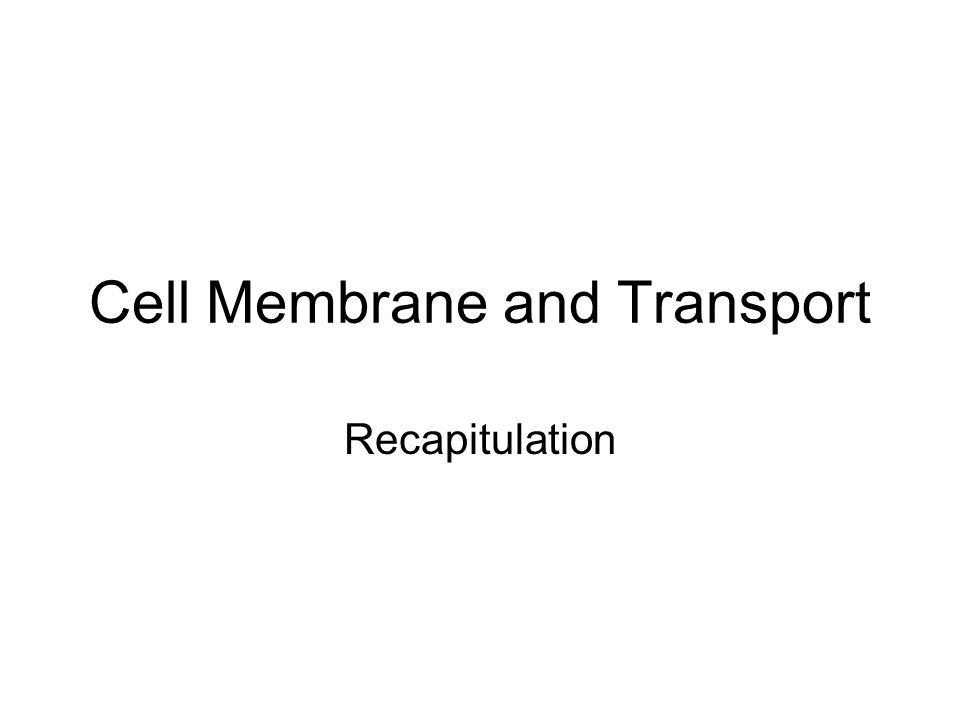 Cell Membrane and Transport Recapitulation