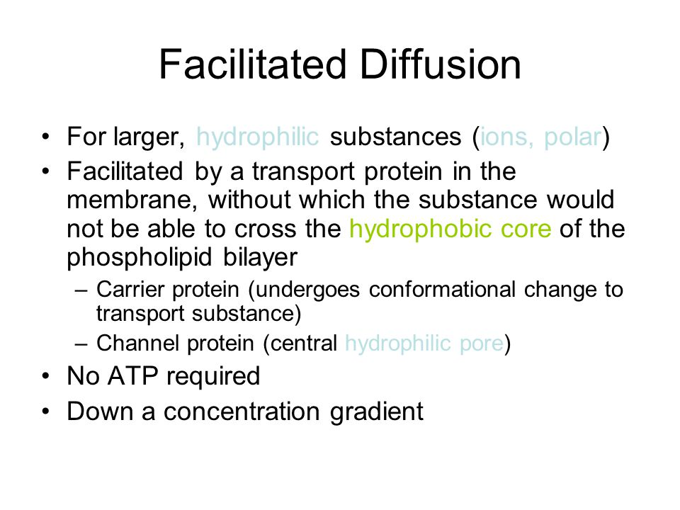 Active transport The movement of substances from a region of lower concentration to a region of higher concentration, against the concentration gradient ATP required Primary active transport –carrier protein-mediated –Occurs for ions and small hydrophilic molecules Bulk transport –Involves invagination of the plasma membrane or the extension of pseudopodia –Occurs for large objects or macromolecules