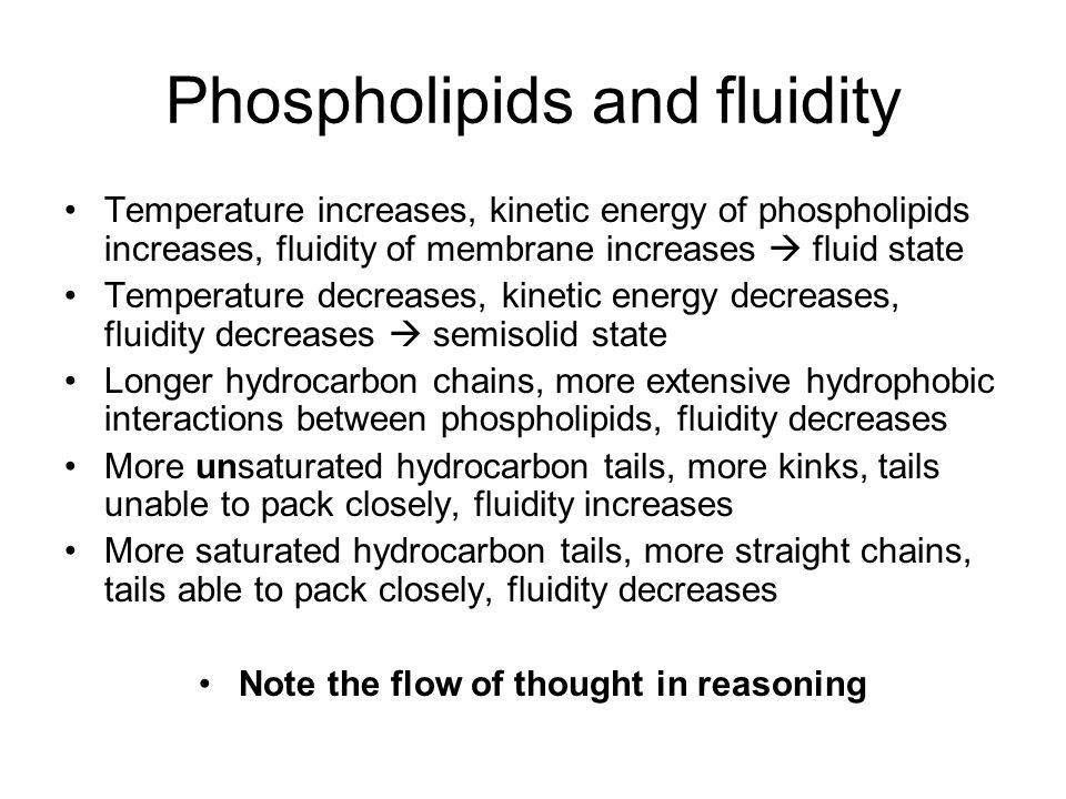 Phospholipids and fluidity Temperature increases, kinetic energy of phospholipids increases, fluidity of membrane increases  fluid state Temperature