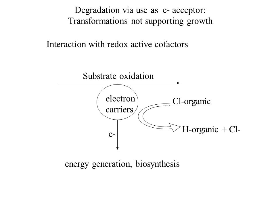 Degradation via use as e- acceptor: Transformations not supporting growth Interaction with redox active cofactors Substrate oxidation electron carriers e- energy generation, biosynthesis Cl-organic H-organic + Cl-