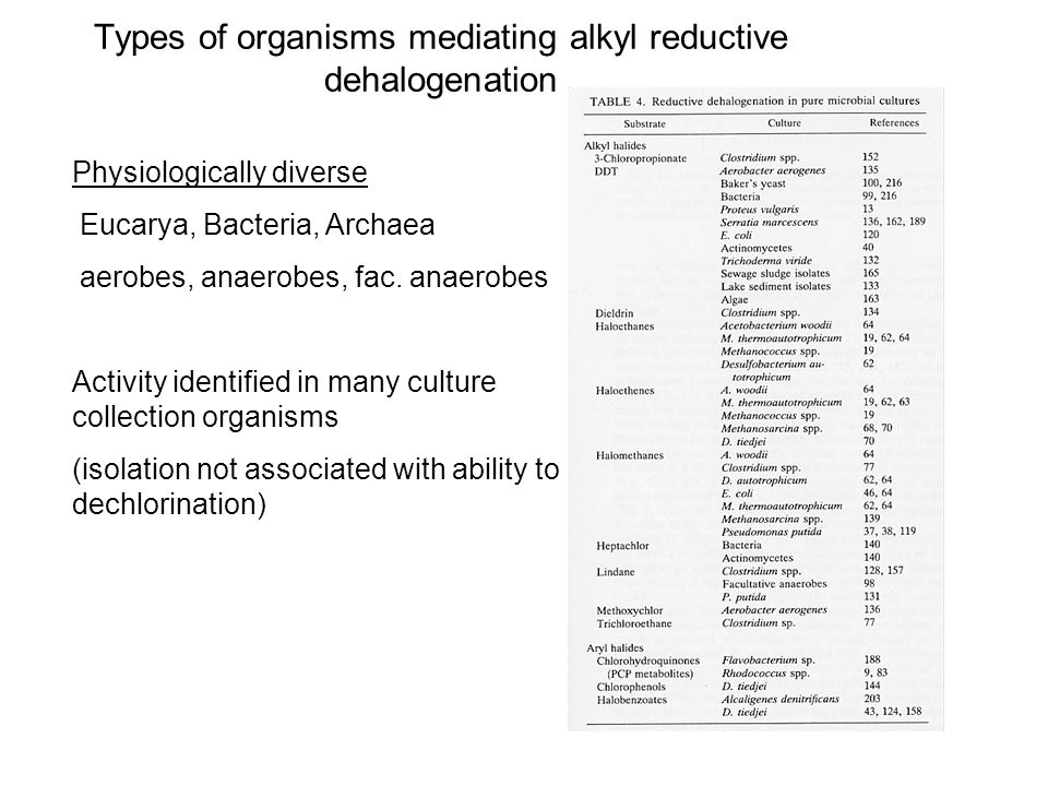 Types of organisms mediating alkyl reductive dehalogenation Physiologically diverse Eucarya, Bacteria, Archaea aerobes, anaerobes, fac.