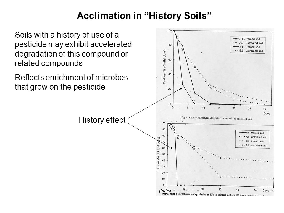 Acclimation in History Soils Soils with a history of use of a pesticide may exhibit accelerated degradation of this compound or related compounds Reflects enrichment of microbes that grow on the pesticide History effect