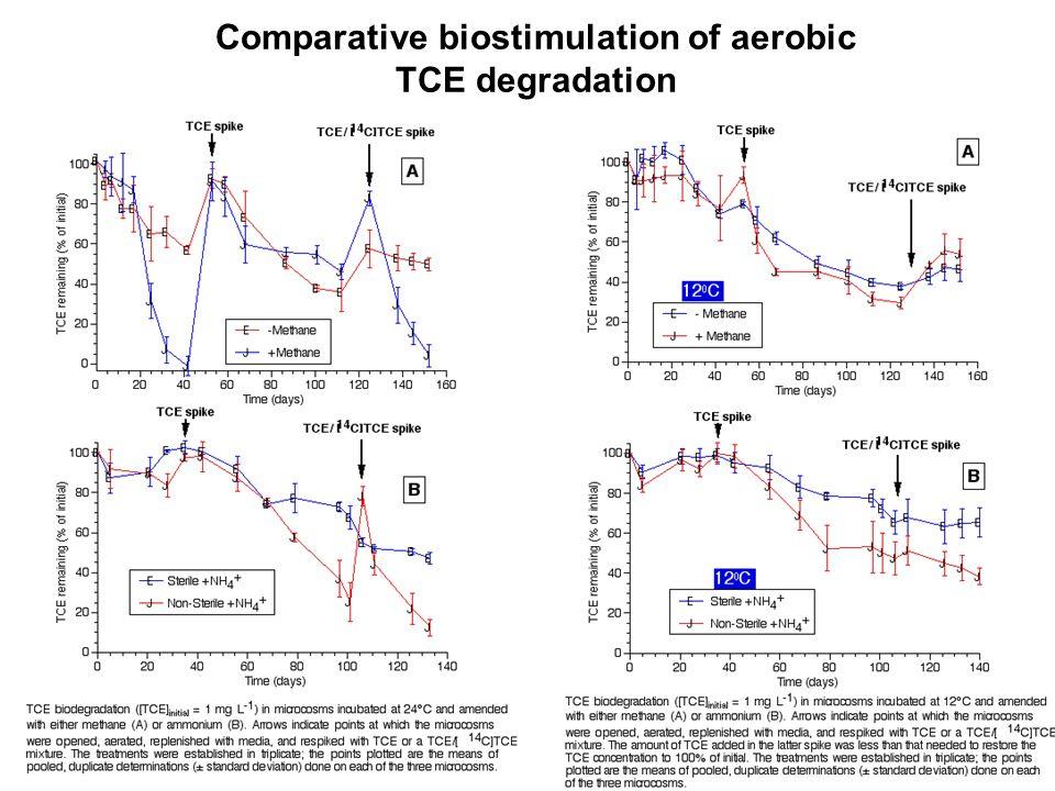 Comparative biostimulation of aerobic TCE degradation
