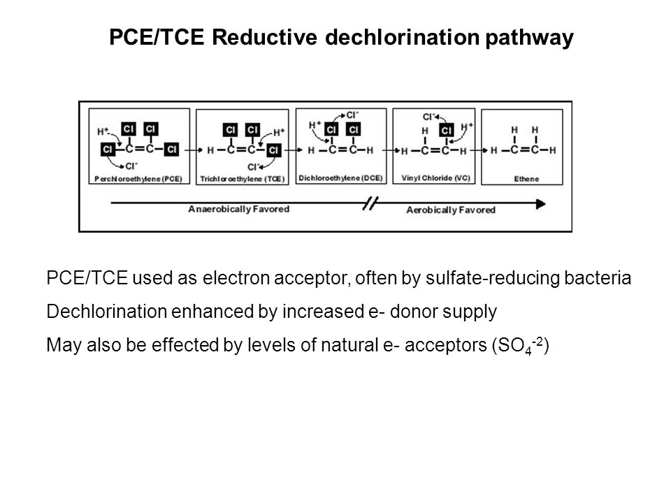 PCE/TCE Reductive dechlorination pathway PCE/TCE used as electron acceptor, often by sulfate-reducing bacteria Dechlorination enhanced by increased e- donor supply May also be effected by levels of natural e- acceptors (SO 4 -2 )